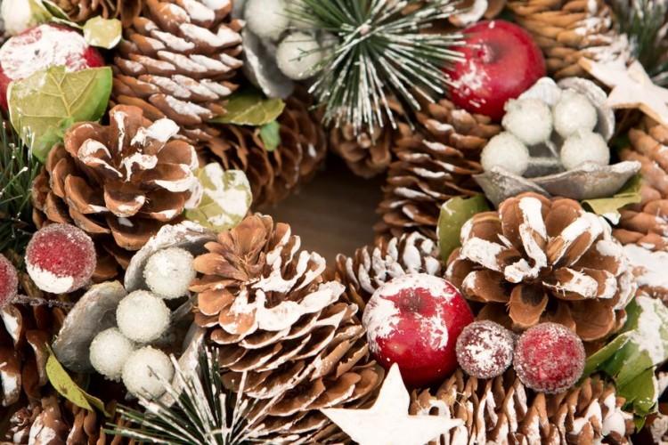 Por Navidad ¡adorna el Botànic! en el Jardí Botànic